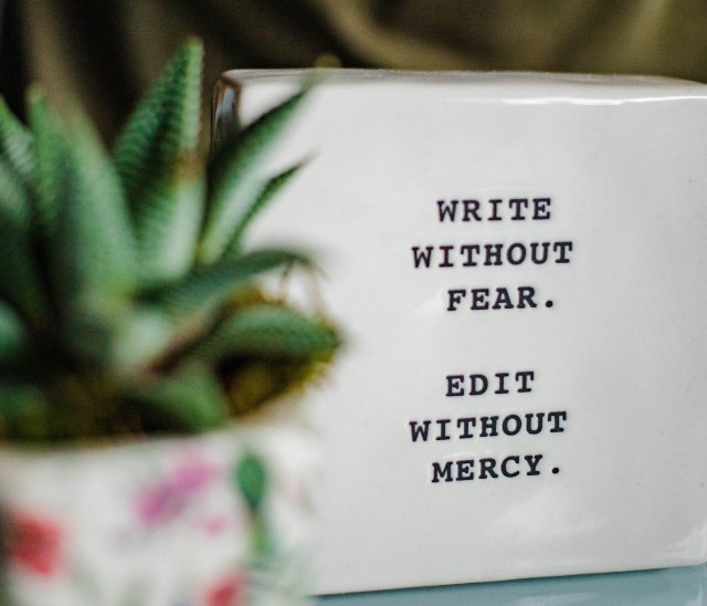 sign that says write without fear edit without mercy and succulent