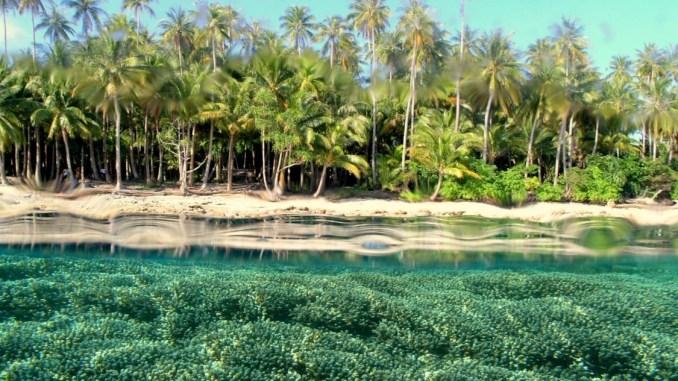 west papua paradise