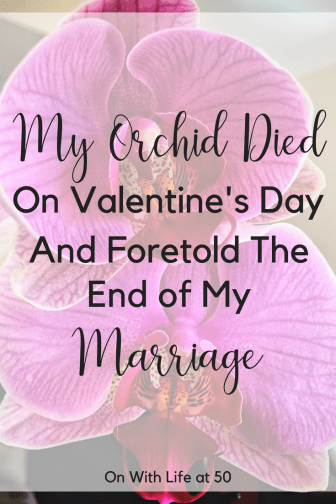 My Orchid died on Valentine's day and foretold the end of my marriage