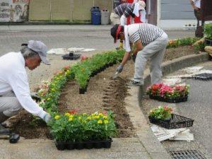 生活環境部会・花いっぱい