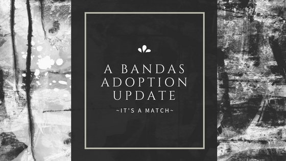 It's A Match - A Bandas Adoption Update