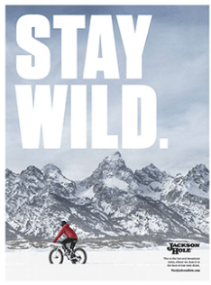 stay wild bike