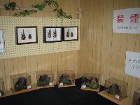 昆虫イベント のじりこぴあ07