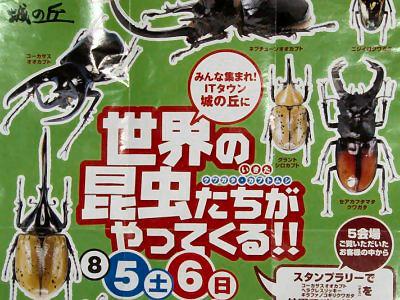 昆虫イベント 住宅展示会場01