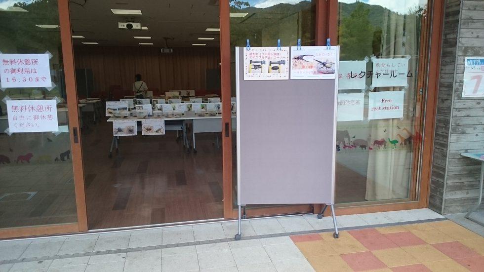 京都市動物園の昆虫イベント開催a