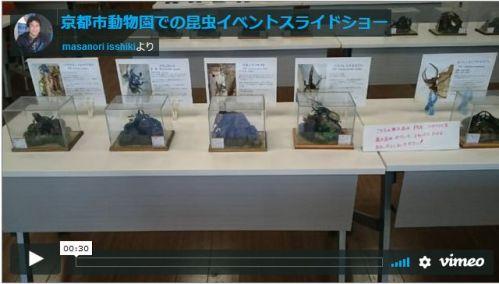 京都市動物園での昆虫イベント開催