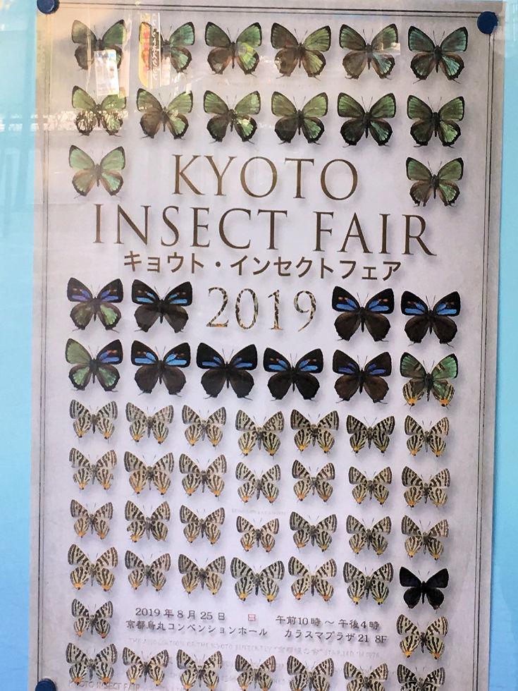 インセクトフェアin京都