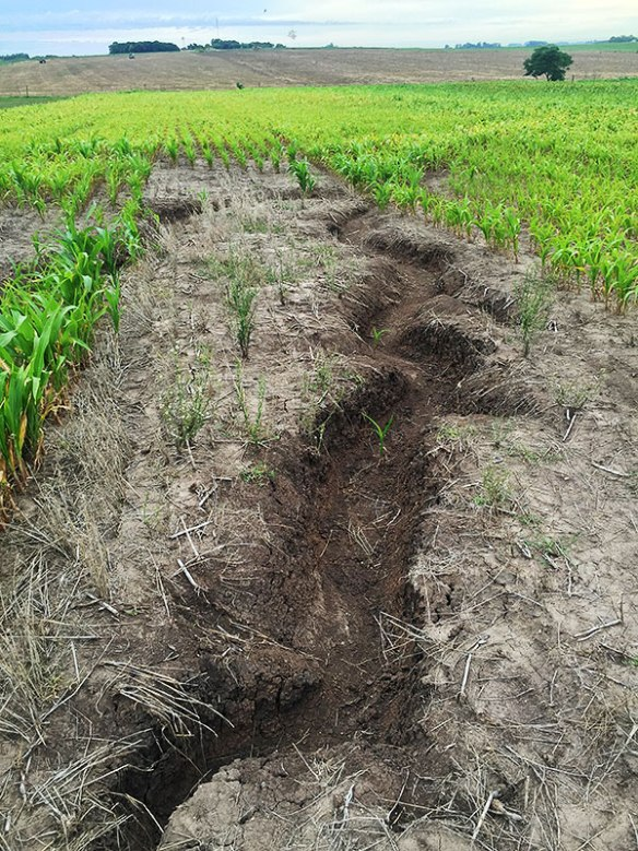 Soil erosion in a bad rotation