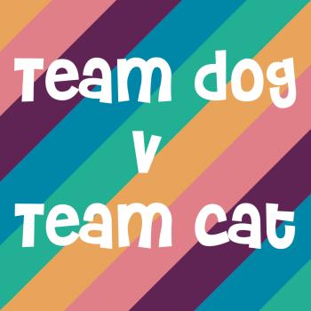Team Dog v Team Cat