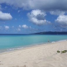 sandy-point-beach-st-croix