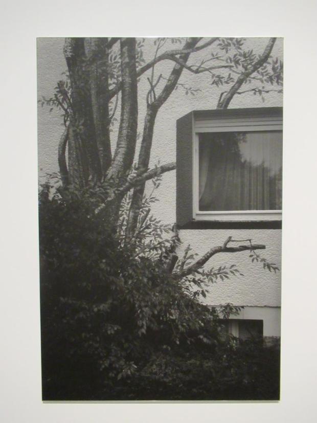 A.D.F.-W.B.-03 © Dirk Braeckman