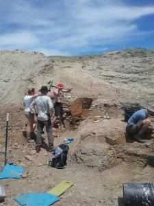 op de opgraving