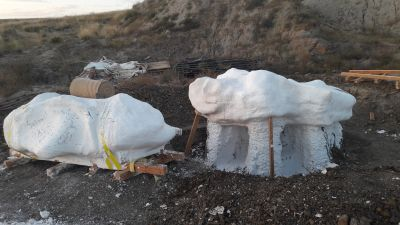 opgraving triceratops ingipsen grote brokken