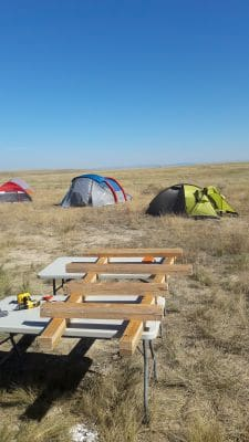opgraving triceratops het kamp