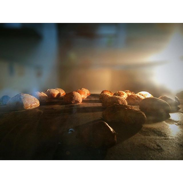 コツコツパンを焼いていきます | OPAN オパン|東京 笹塚のパン屋