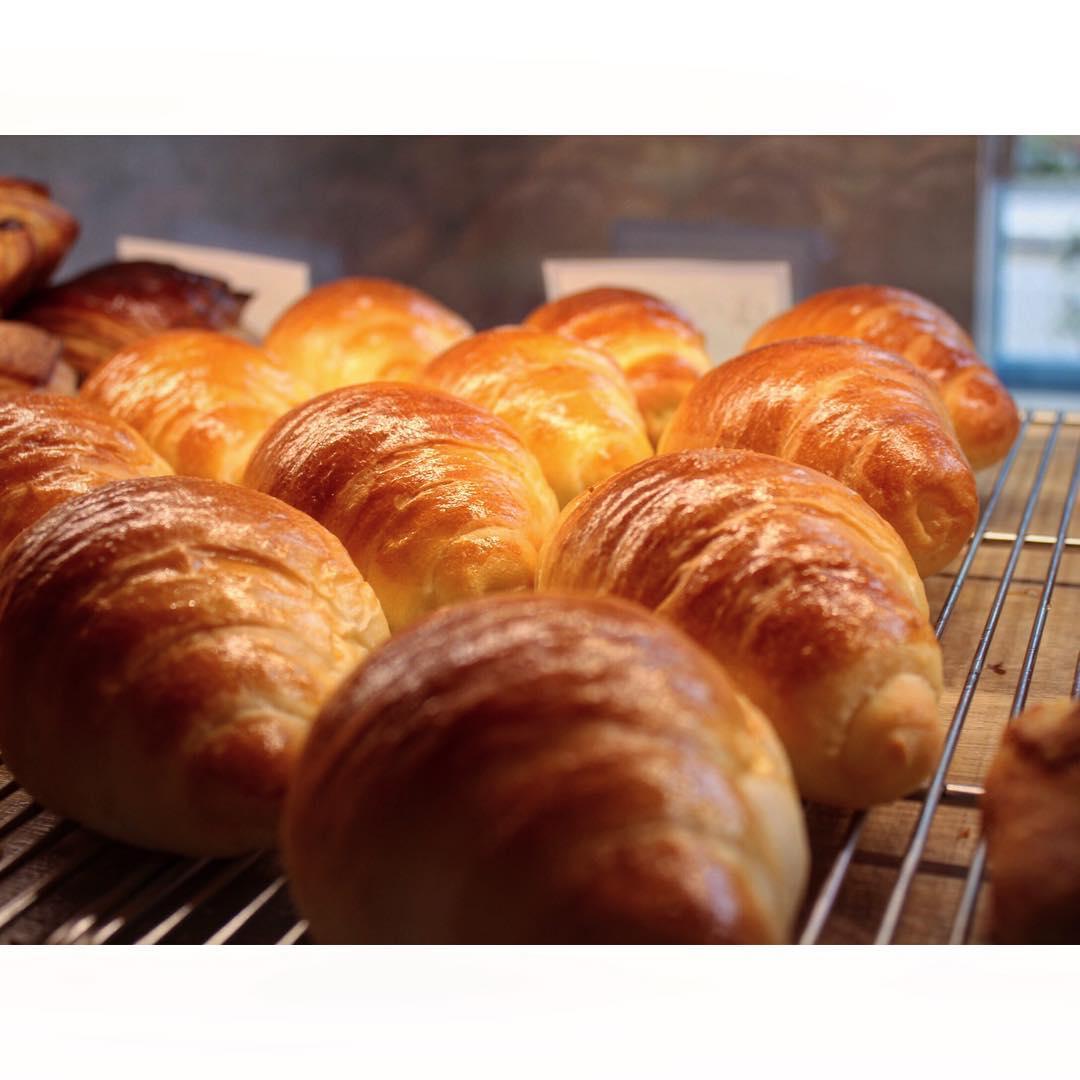 オパンのオパンの塩バターロール | OPAN オパン|東京 笹塚のパン屋