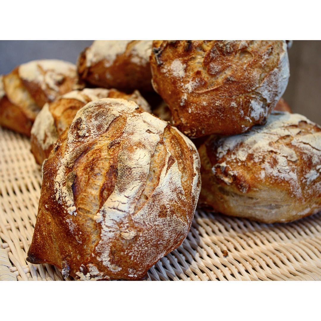 オパンのくるみ入り田舎パン | OPAN オパン|東京 笹塚のパン屋