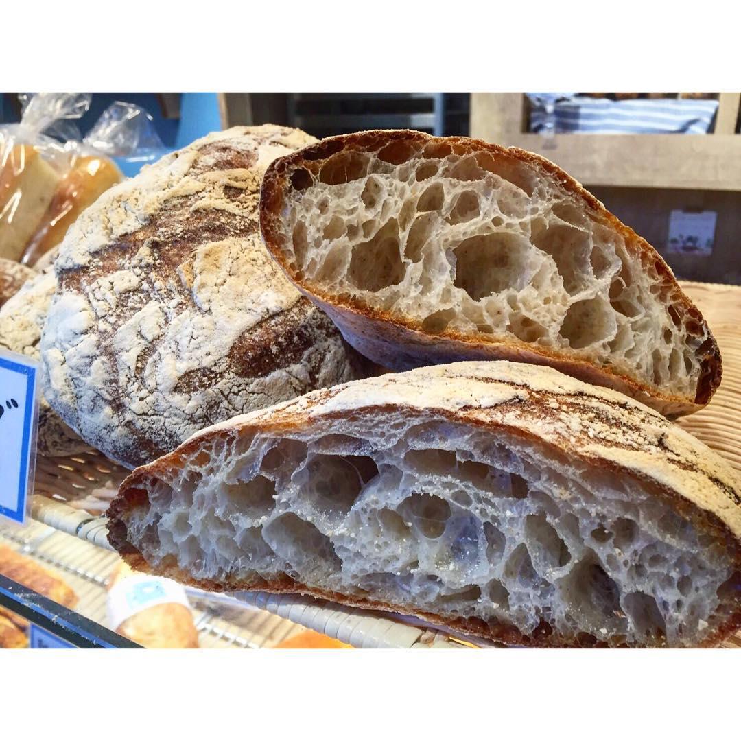 オパンのパンドロデヴ | OPAN オパン|東京 笹塚のパン屋