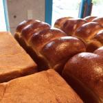 オパンの山型食パン、角型食パン(2017.03.28)