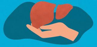 Transplante de fígado
