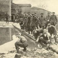 23.05.1915: Geräuchertes