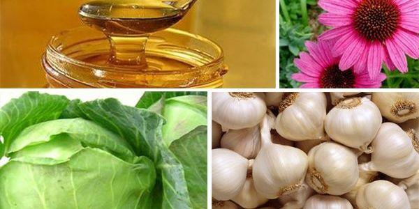 Fuentes alimenticias de antibióticos naturales mejoran la inmunidad