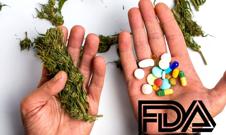 Estudo inovador fornecido à FDA não mostra toxicidade hepática