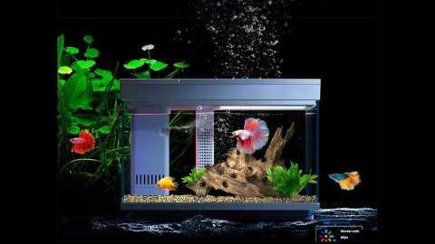 Xiaomi geometry AI Smart Fish Tank - Xiaomi Geometry AI Smart Fish Tank Banggood Coupon Code [30L] [Czech Warehouse]