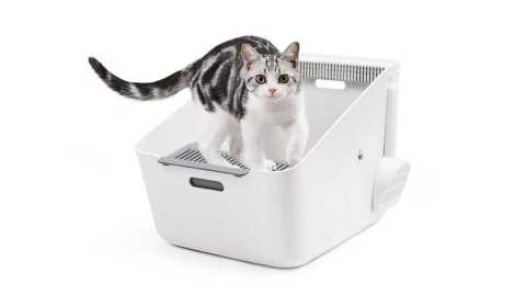 Petkit Inductive Net Smell Cat Toilet - Xiaomi Petkit Inductive Cat Toilet Banggood Coupon Promo Code
