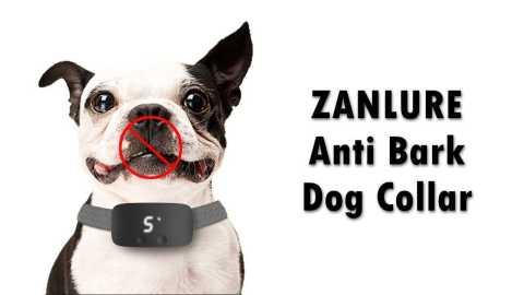 ZANLURE Anti Bark Dog collar - ZANLURE Anti Bark Dog Collar Banggood Coupon Promo Code
