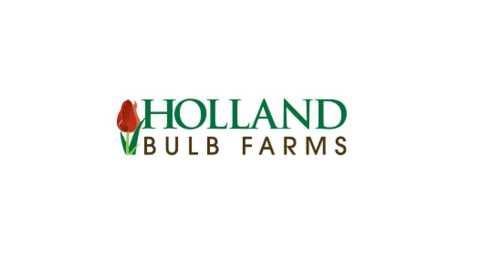 holland bulb farms coupons - Holland Bulb Farms Coupon