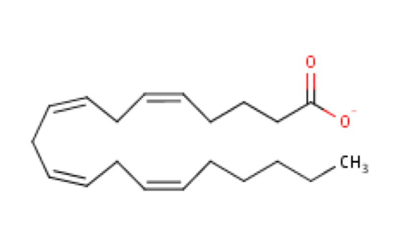 VI. Lipids, Structure