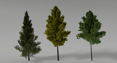 Realistic Trees Scene
