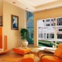 Colored Living Room Interior Scene