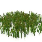 ذبل العشب