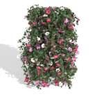 Stand Garden Flower Arrangements