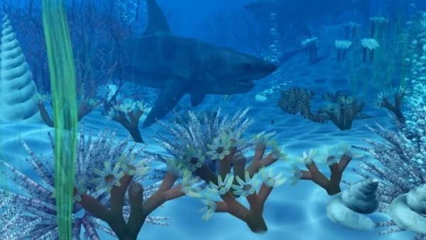 Ocean Underwater With Shark