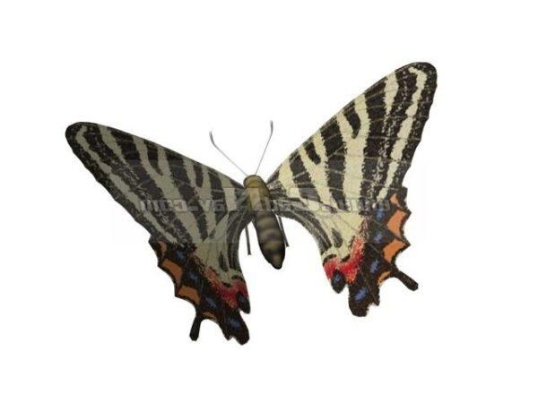 Animal Puziloi Luehdorfia Butterfly