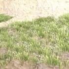 حديقة السهوب لاندفورم