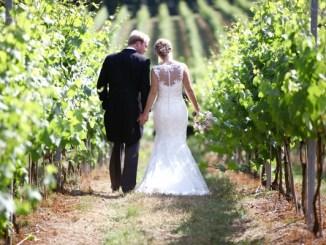 Outdoor wedding couple in vineyard