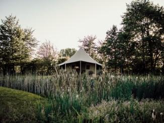 Kula tent in wild grass