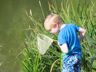 Child playing in the lake at Brook Meadow