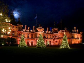 Waddesdon Manor with Christmas trees in a line out front