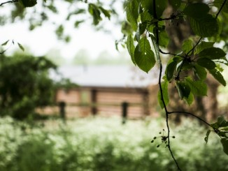 Foxton Lock Lodges