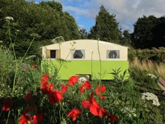 Vintage Van in a field