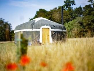 Raynham Estate pop-up yurt