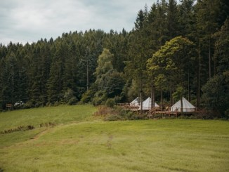 Tipis at the edge of a forest