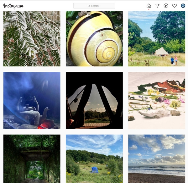 Example of an instagram feed