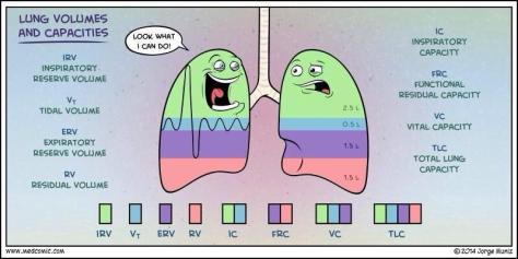 Lung_Volumes_Comic
