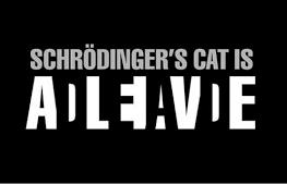 OA160: Schrodinger's Andrew